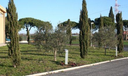 Il Giardino dei Giusti, un parco per onorare la dignità umana