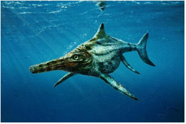 Ittiosauri, il mistero dei sauri marini