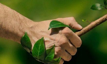 Giornata Mondiale dell'Ambiente:  un impegno che deve durare tutto l'anno