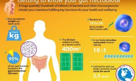 Il microbiota umano, la simbiosi perfetta